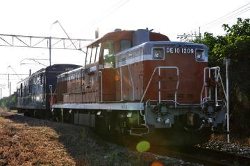 マヤ201010(2)