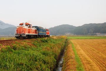 マヤ201010(9)