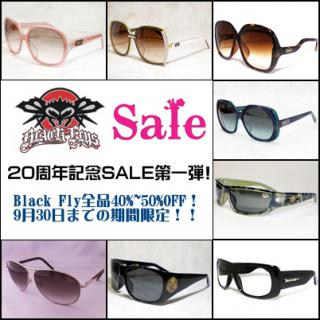 black_fly_sale.jpg