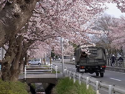 norakuro1.jpg