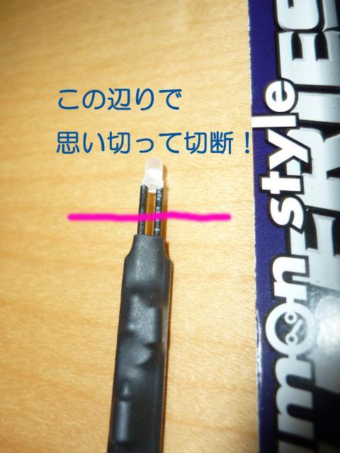 P1010608_convert_20100725203859.jpg