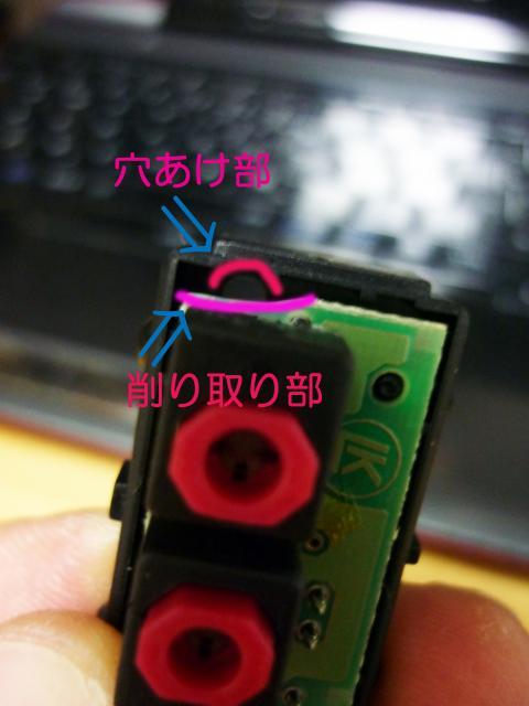 P1010615_convert_20100725204000.jpg