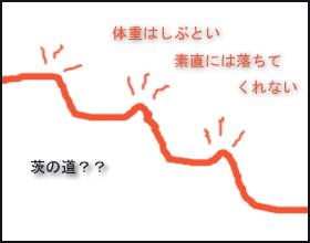 $CREATOR'S VOICE  開発マンの独り言