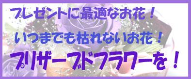 IMG_054720.jpg