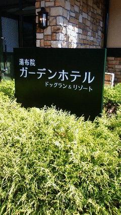 NEC_7501.jpg