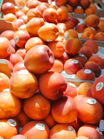 fruits2012_3.jpg