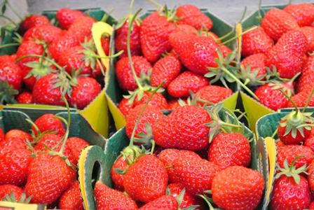 fruits2012_7.jpg
