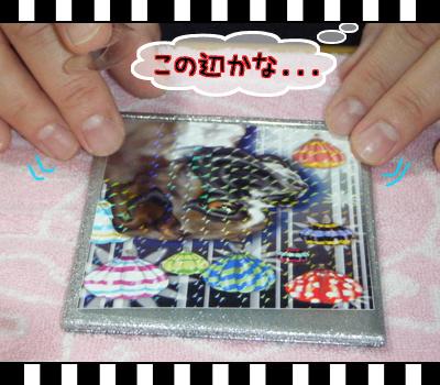 10_0321_04.jpg