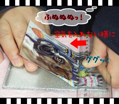 10_0321_07.jpg