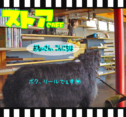 10_0717_06.jpg