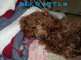 001_20120118225404.jpg