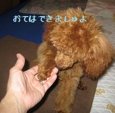 002_20111224010750.jpg