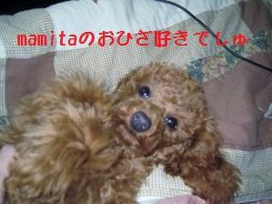 003_20120108224209.jpg