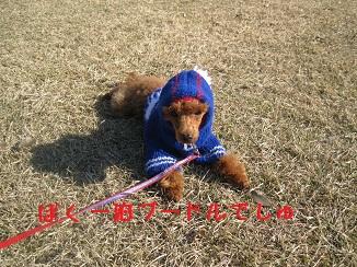 010_20111212205945.jpg