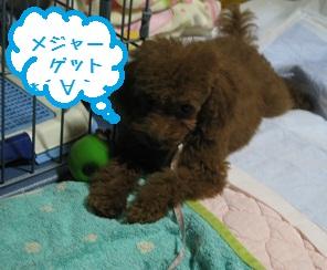 012_20111019202941.jpg