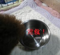 015_20111009204245.jpg