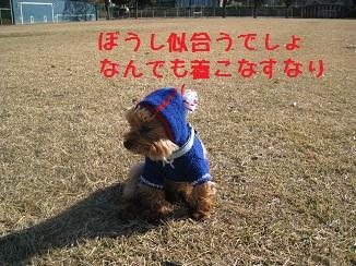 017_20111212210008.jpg