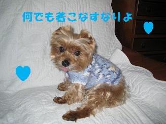 018_20120303192442.jpg