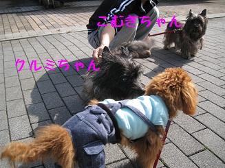 018_20120306205312.jpg