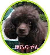 020_20111021214154.jpg