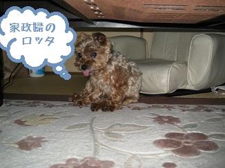022_20111023233034.jpg