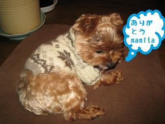 022_20111106234456.jpg