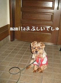 024_20111020204348.jpg