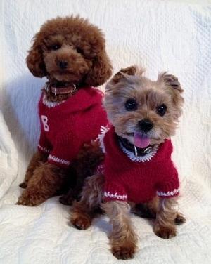 クリスマスセーター3