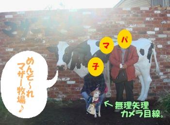 10_11_28_11.jpg