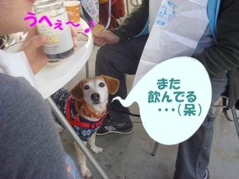 10_11_28_14.jpg