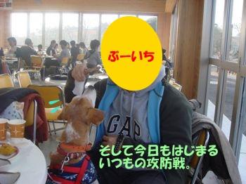 10_11_28_15.jpg