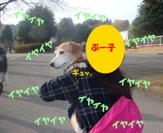 10_11_28_16.jpg