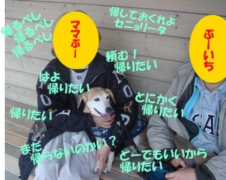 10_11_28_17.jpg