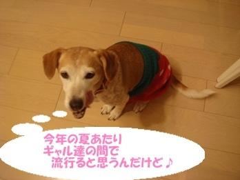 10_12_21_02.jpg