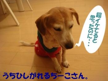 10_12_21_03.jpg