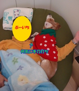 11_01_30_01.jpg