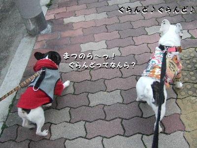 nana晴散歩