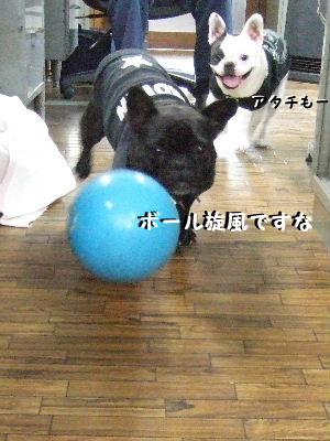 新幹線ボール投入
