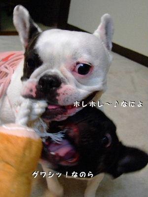 晴nana爆遊