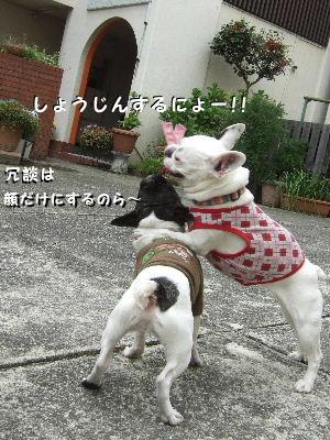 晴nana5