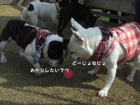 リズちゃん&nana