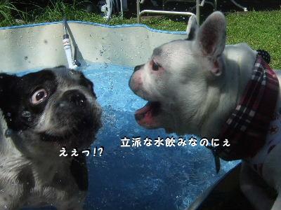 リズちゃん・nana