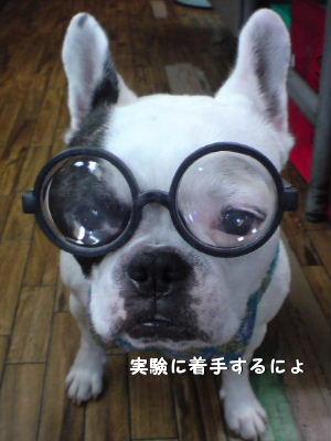 nanaリーダー