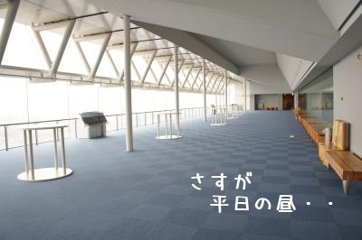 6_20120109155353.jpg