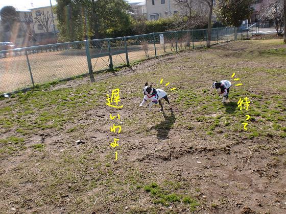 20100304CIMG0529.jpg