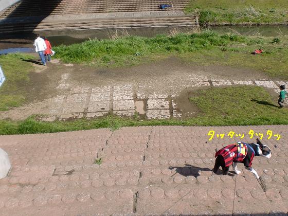 20100306CIMG0575.jpg