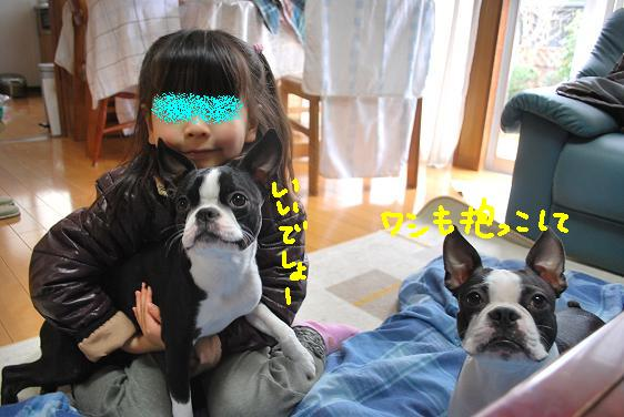 20100330DSC_6036.jpg