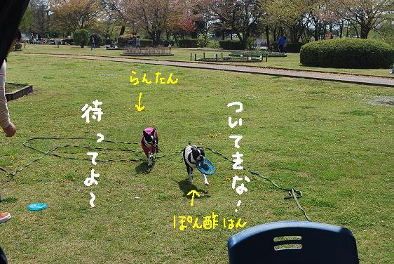 20100418DSC_0110.jpg