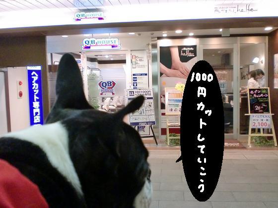 20100502CIMG3810.jpg
