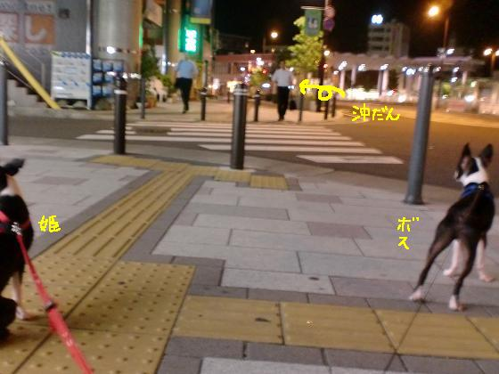20100705CIMG4134.jpg